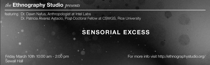sensorialexcess-digitalbannerwide